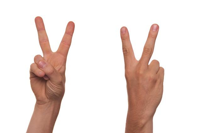 gesture-422566_640.jpg